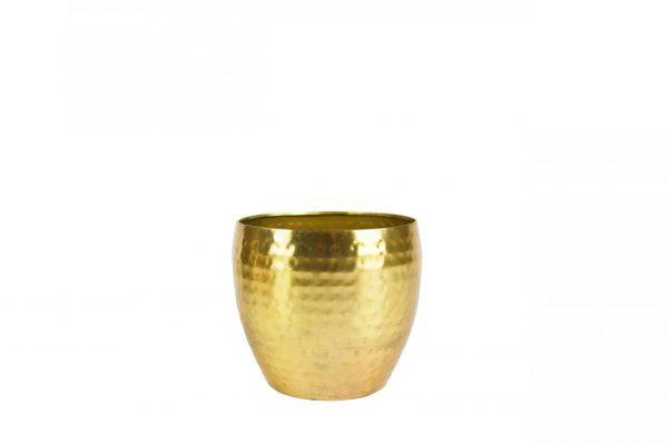 Pot kody - h12xd15cm goud