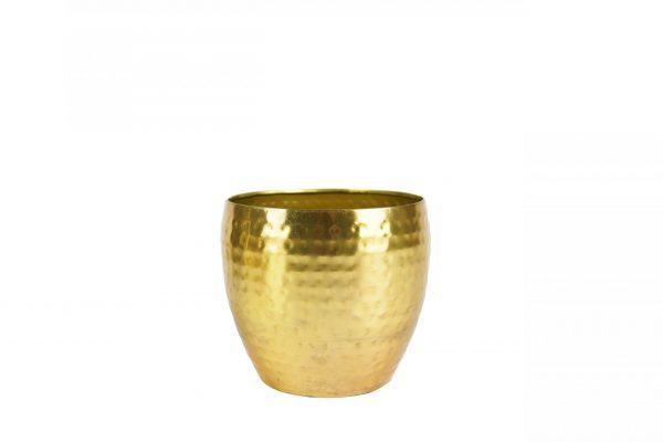 Pot kody - h15xd17cm goud